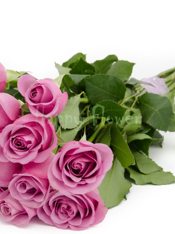 buchet-de-trandafiri lila 2