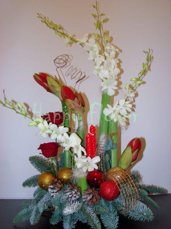 aranjament-floral-de-craciun-cu-amaryllis