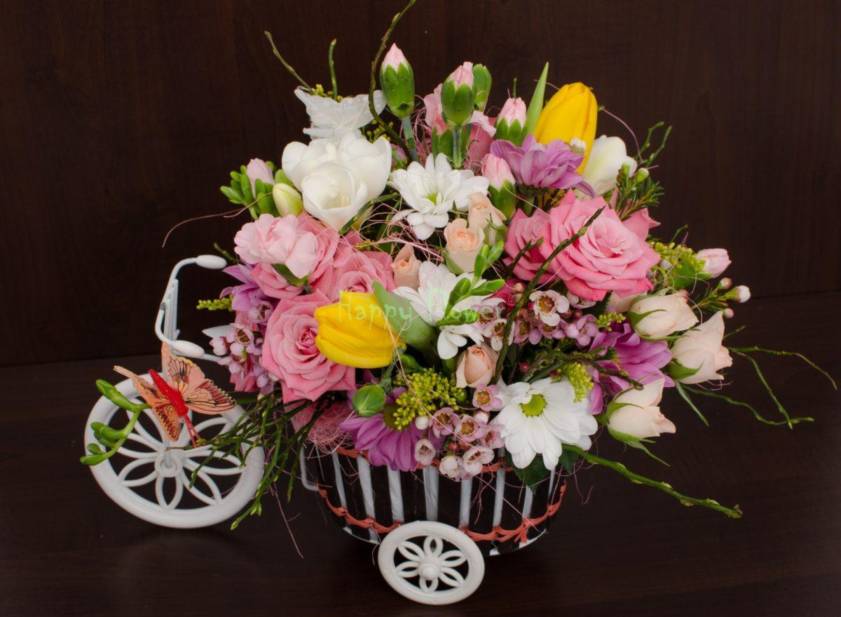 Tricicleta flori primavara, frezii, lalele, miniroze si crizanteme