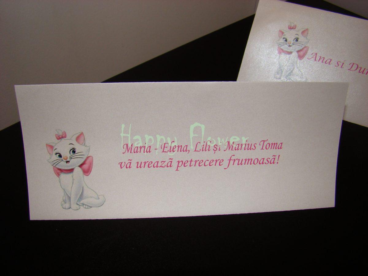 Plic bani pisicuta Marie