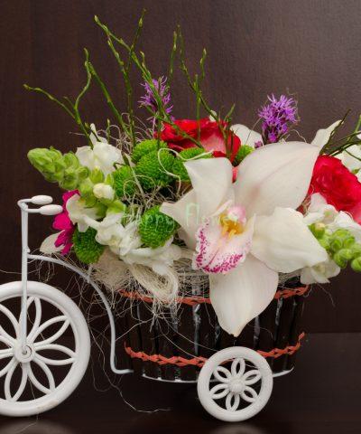 Tricicleta cu santini verde, orhidee, minigerbera