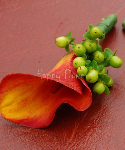 Cocarda cala portocalie si hypericum verde