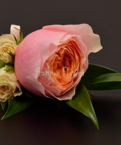 Cocarda mire din trandafir Vuvuzela si miniroze, ruscus italia