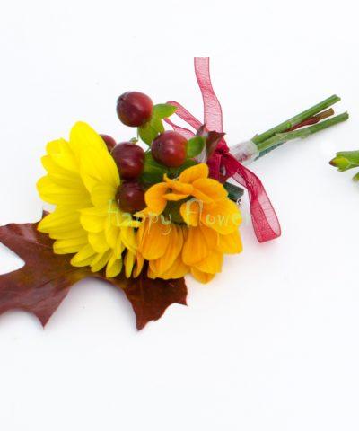 Cocarda toamna, crizanteme, hypericum, quercus