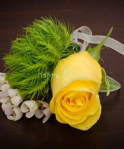 Cocarda trandafir galben, Trick, waxflower alb
