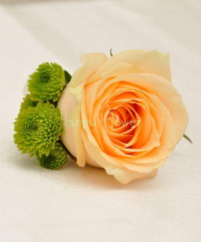 Cocarda trandafir piersica si santini verde