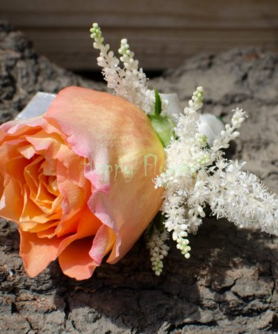 Cocarda trandafir piersica, astilbe grena