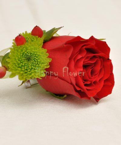 Cocarda trandafir rosu, santini verde, hypericum rosu