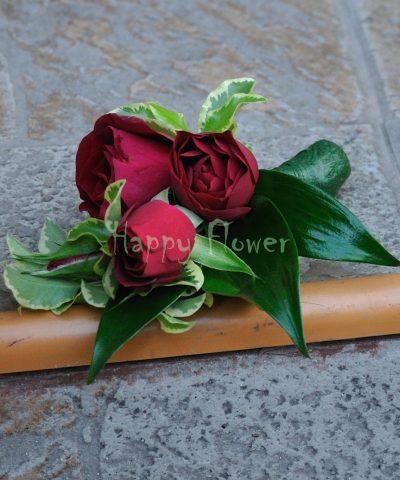 Cocarde miniroze rosii, ruscus italia