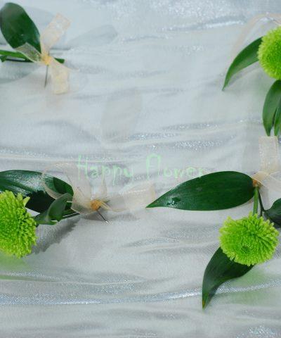 cocarde santini verde