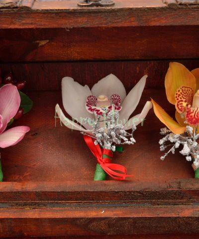 cocarde orhidee