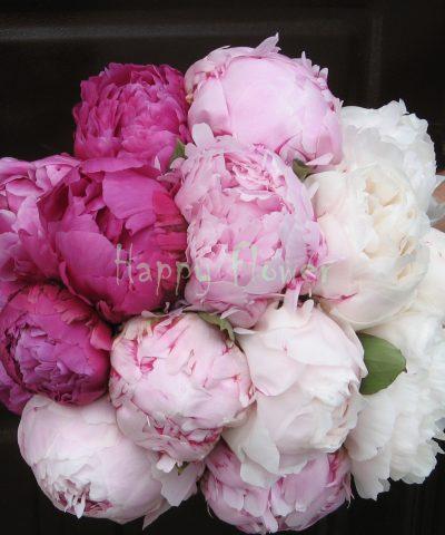 Buchet mireasa bujori albi si roz