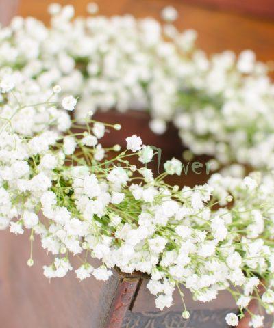Coronita floarea miresei