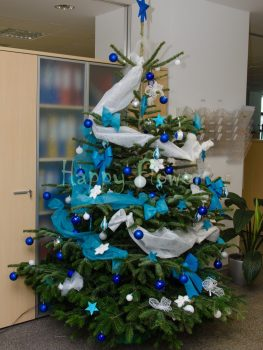 Brad impodobit pentru Craciun, brad natural, inaltime 2 metri, decoratiuni turquoise, albe, albastre si argintii