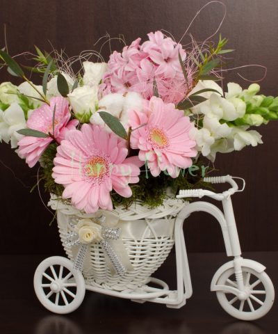 Tricicleta flori roz si albe, zambile, minigerbera, anthirrinum, miniroze, bumbac