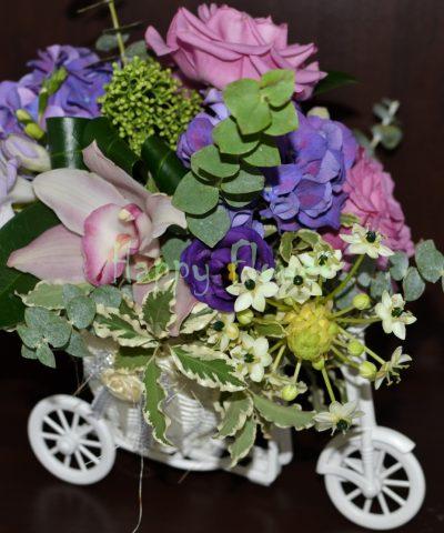 Tricicleta-flori-mov-trandafiri-mov-hortensii-mov-orhidee-frezii-lisiantus