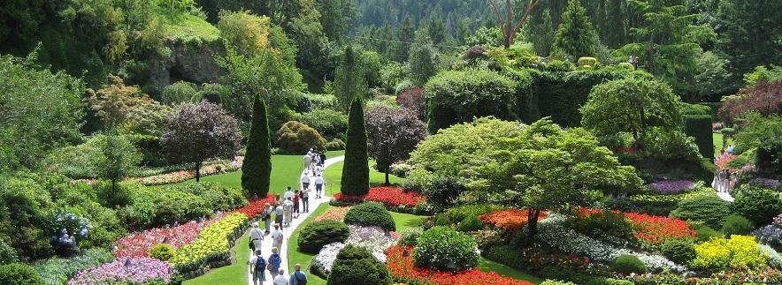 Cine a zis că grădinarii nu pot deveni celebrități? Dacă ai vocație și artistism, iar natura îți este cel mai bun prieten, succesul nu pare a fi atât de imposibil.