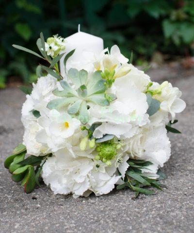 Lumanare-hortensii-albe-plante-suculente-frezii-ornitogalum